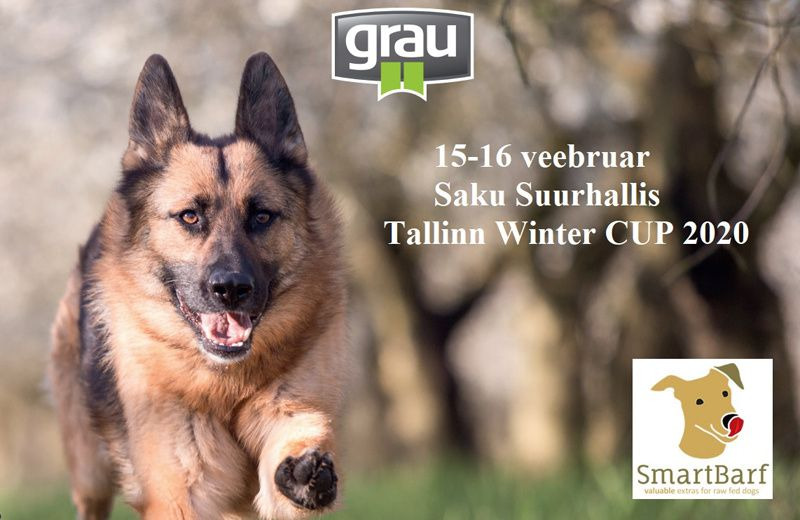 Pontu osaleb koertenäitusel Tallinn Winter CUP 2020